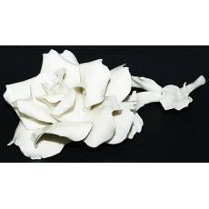 Декоративная роза Artigiano Capodimonte 0210/14